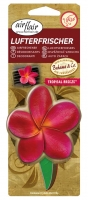 Bahama & Co Lufterfrischer Scented Flower Tropical Breeze